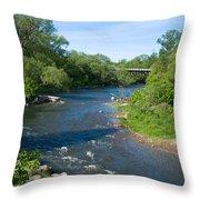River Passing Through A Forest, Beaver Throw Pillow