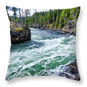 River Power Throw Pillow