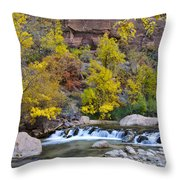 River Rapids In Zion Throw Pillow