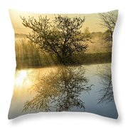 River Rays Throw Pillow