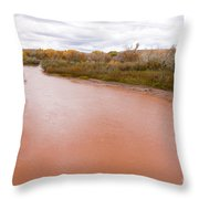 River Red New Mexico Throw Pillow