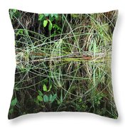 River Reflections 2 Throw Pillow