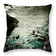 River Rocked Throw Pillow by Susan Maxwell Schmidt