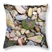River Rocks 2 Throw Pillow