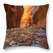 River Rocks In The Narrows Throw Pillow