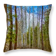 River Run Trail At Arrowleaf Throw Pillow