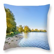 River Shore And Trees Throw Pillow
