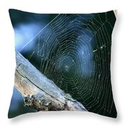 River Spider Web   Throw Pillow
