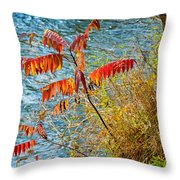 River Sumac Throw Pillow