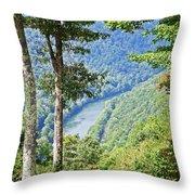 River Thru The Trees Throw Pillow