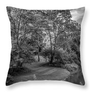 River Tranquility Monochrome Throw Pillow