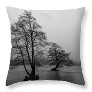 River Trees And Fog Throw Pillow
