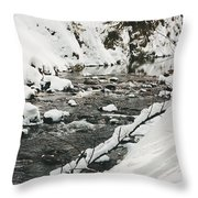 River Vertical Throw Pillow