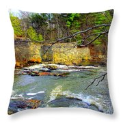 River Wall Throw Pillow