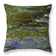 River Water 2 Throw Pillow