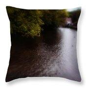 River Wye Throw Pillow