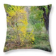 Riverbank Colors Throw Pillow