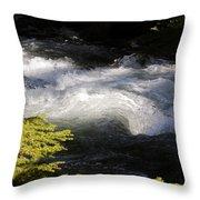 River's Ebb Throw Pillow