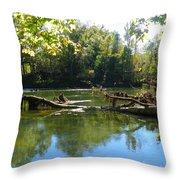 Rivers Edge Throw Pillow