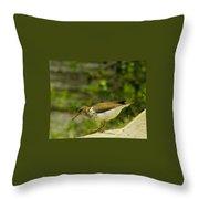 Riverside Bird Throw Pillow