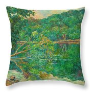 Riverview Reflections Throw Pillow