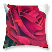 Riverview Throw Pillow