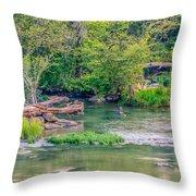 Riverwalk Park II Throw Pillow