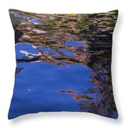 Riverwalk Refletion Throw Pillow
