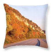 Road Along A River, Great River Road Throw Pillow
