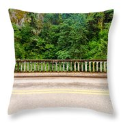 Road And Lush Green Forest Throw Pillow