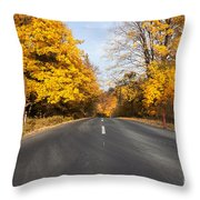 Road In Autumn Forest Throw Pillow