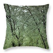Road In Snow Covered Forest Throw Pillow