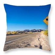 Road In The Desert #2 Throw Pillow