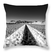 Road In The Desert Throw Pillow
