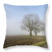 Road In The Fog Throw Pillow