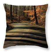 Road Into The Woods Throw Pillow