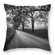 Road Not Traveled Throw Pillow by Jon Glaser