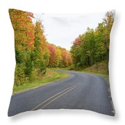 Road Passing Through A Forest, Alger Throw Pillow