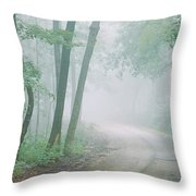 Road Passing Through A Forest, Skyline Throw Pillow