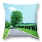 Road Passing Through Horse Farms Throw Pillow