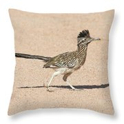 Road Runner On The Road Throw Pillow