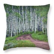 Road Through A Birch Tree Grove Throw Pillow