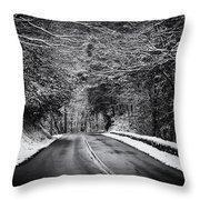 Road Through Dark Snowy Forest E93 Throw Pillow