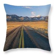 Road Through Desert Throw Pillow
