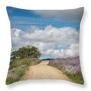 Road Through Lupine Throw Pillow