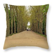 Road To Chenonceau Throw Pillow