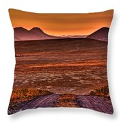Road To Edna Valley Throw Pillow