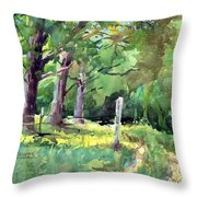 Road To Keyesville Cemetary Throw Pillow