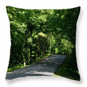 Road To Nature Throw Pillow