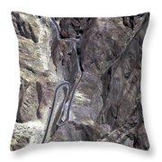 Road To Nazca Throw Pillow